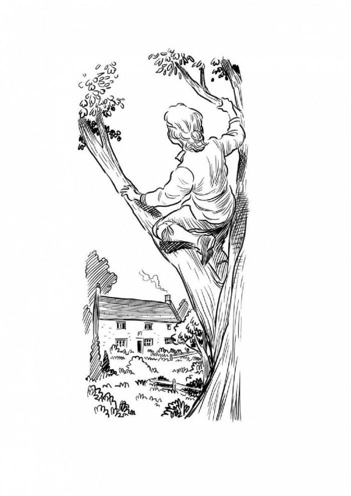 Кой е Исак Нютон