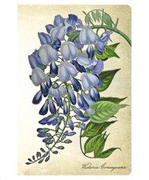 Бележник Paperblanks Blooming Wisteria, Mini, Unlined/ 5763