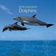 Calendar 2018: Dolphins